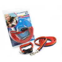 Gaysentials Pet Collar and Leash Set Small