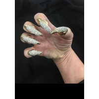 Bling Nail Set Crystal 5 Piece Cat Claws